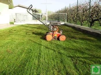 La manutenzione del tappeto erboso for Arieggiatore per prato