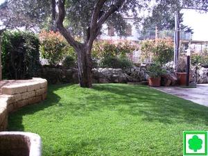 Semina di prati erbosi o posa tappetto a rotoli for Giardinieri verona